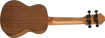 Epiphone EpiLani Ukulele Soprano Natural Satin