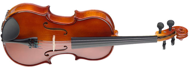 STAGG VN 4/4 Fiolin m/case