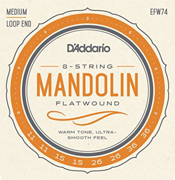 D'Addario EFW74 Flatwound Mandolin Strings, Stainless Steel, Medium, 11-36