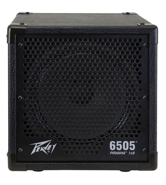 Peavey 6505-MICRO-1x8 SPEAK.
