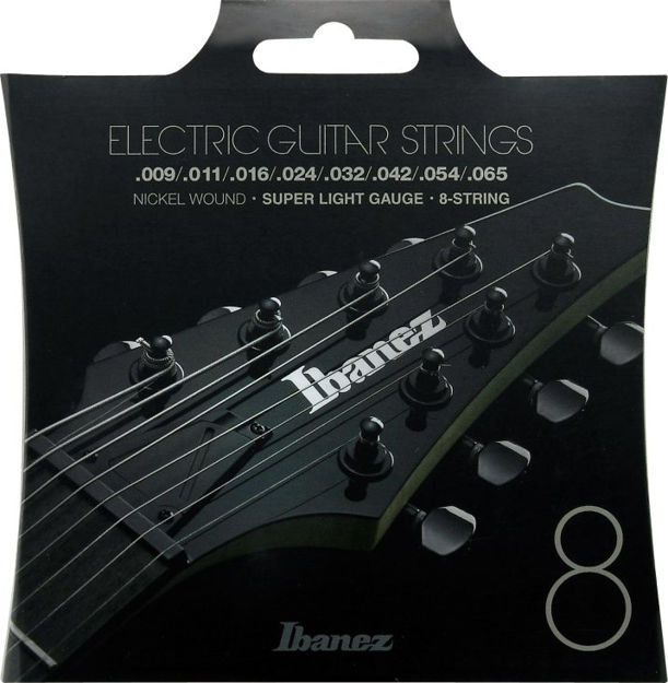 Ibanez IEGS8