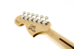 Fender Chris Shiflett Telecaster® Deluxe