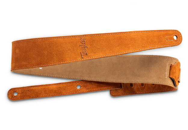"""TaylorWare 4402-25 Taylor Strap,Embroidered Suede,Honey,2.5"""""""
