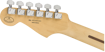 Fender 2019 Limited Edition Player Stratocaster®, Pau Ferro Fingerboard, Shell Pink
