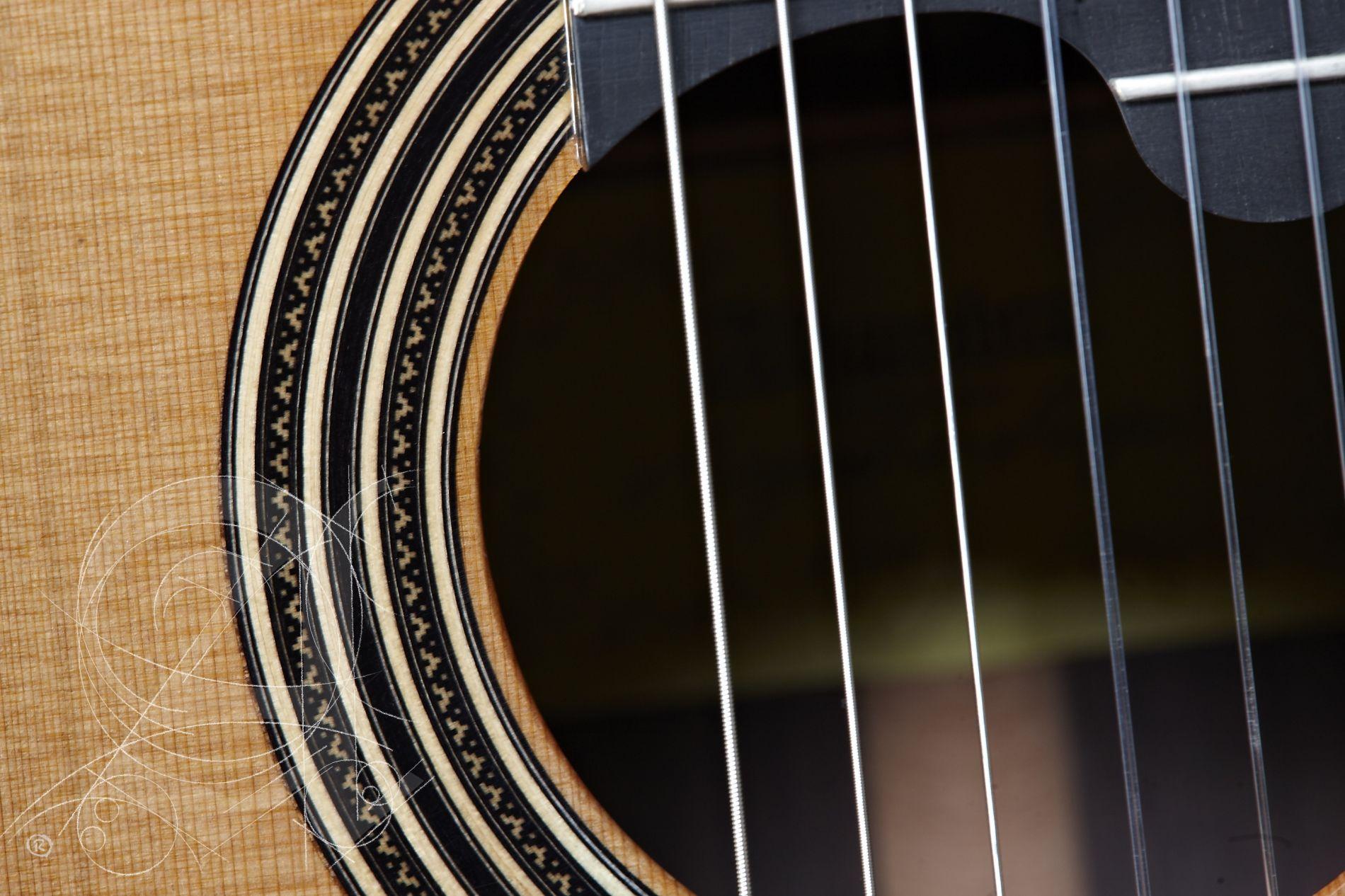 Alhambra Guitarras LINEA PROFESIONAL +CASE (9650)
