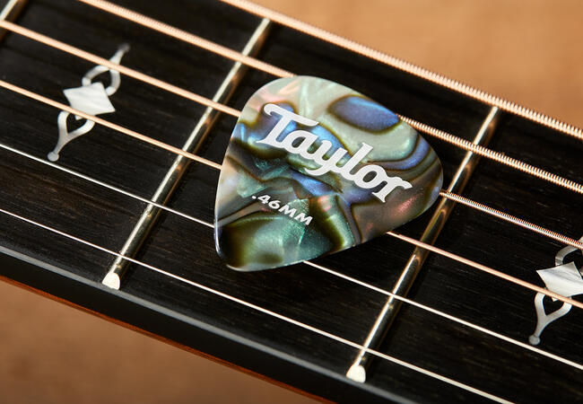TaylorWare  Taylor Celluloid 351 Picks, Abalone, 1.21mm, 12-Pack
