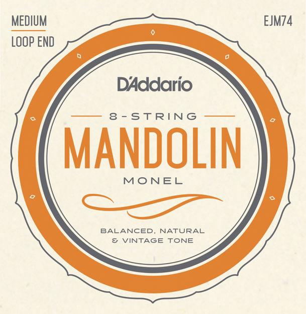 D'Addario EJM74 Monel Mandolin Strings, Medium, 11-40