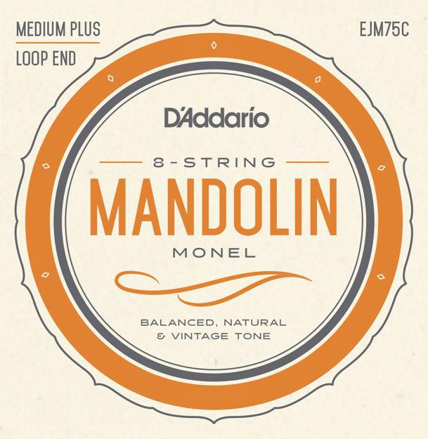 D'Addario EJM75C Monel Mandolin Strings, Medium Plus, 11-41
